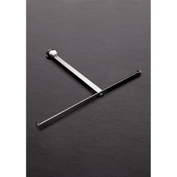 THE ANAL IMPALER ACERO INOX